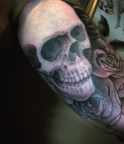Skull 頭蓋骨