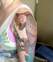 Owl フクロウ